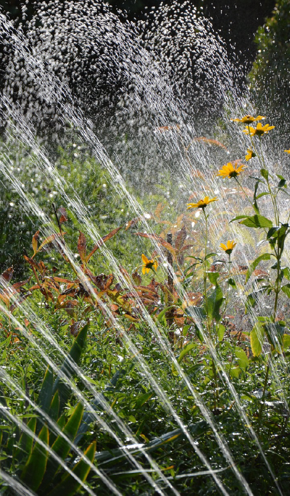 Instalación de sistemas de riego en jardines Valencia